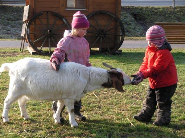 Wald- und Tierkindergarten Leonberg
