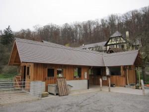 Waldkindergarten Seehaus Leonberg