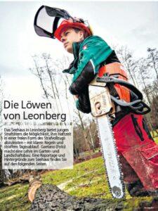 Die Löwen von Leonberg Stihl